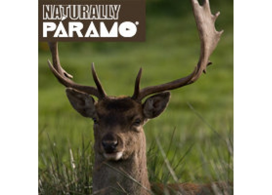 Naturally Paramo